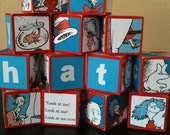 Cat in the Hat Building Blocks