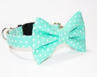 Bow Tie Dog Collar- Mint Polka Dot- Dog Collar