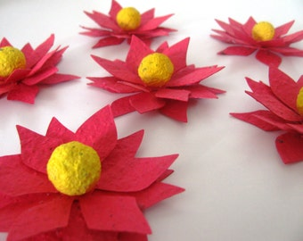 10 POINSETTIA SHAPED Wildflower blend seed paper flowers