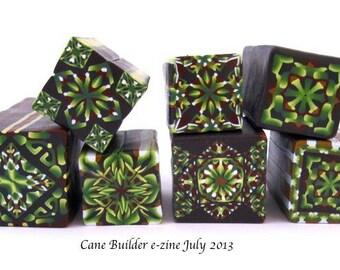 Cane Builder July 2013 back issue