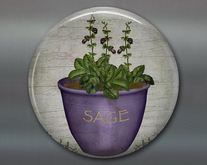 "3.5"" sage magnet, hand painted herb art magnet, country kitchen decor, gift for gardener,  large fridge magnet, primitive decor MA-1620"