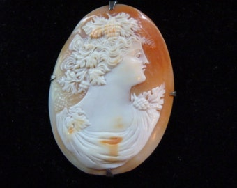 Cameo Brooch,  Carved from Shell, Magnificent bc1