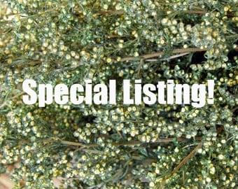Special Listing for Stephanie