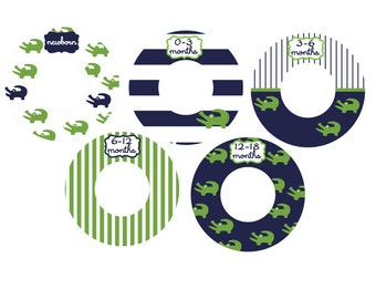 blue and green alligator closet dividers