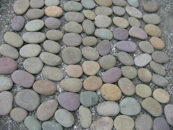 "100 Flat River Rocks Large Lot of 100 Creek Stones 2"" average Lot 18B"