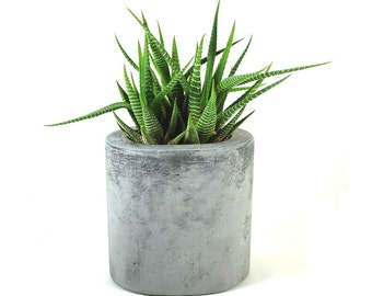 Oval Concrete Pot / Vase