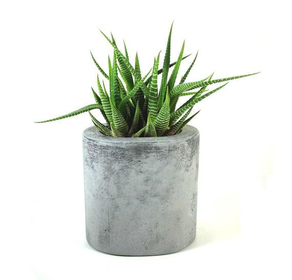 Oval Concrete Pot / Vase