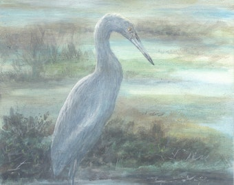 8 by 10 painting acrylic on canvas panel original florida bird little blue heron portrait