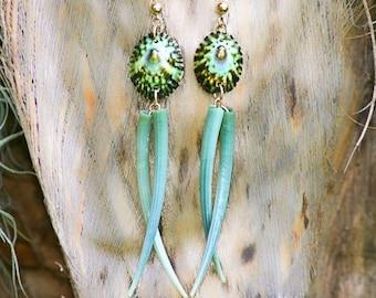 Green Limpet & Green Tusk Shell Earrings
