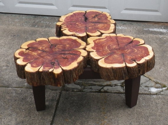 Items Similar To Cedar Slab Coffee Table On Etsy