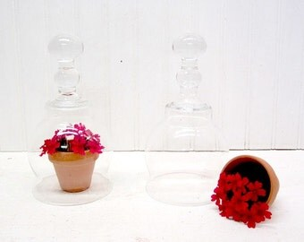 Pair of Pretty Clear Glass Dome Cloches