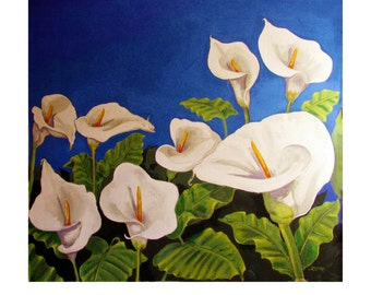Calla Lilly Bouquet, Garden, Close-up 8 White Flowers,Original illustration artist Print Wall Art, Free Shipping in USA.