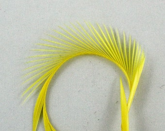 Yellow Goose Biot Feathers pale  Biots 4 GBD-41 craft feathers fly tying feathers