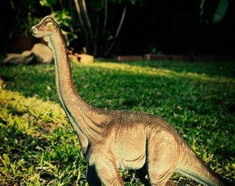Brachiosaurus portrait - Dinosaur photo print