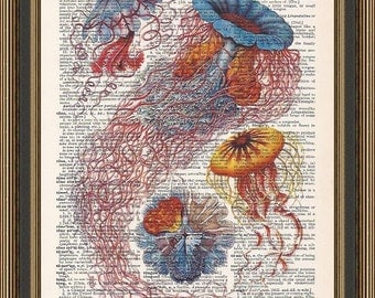 Vintage jellyfish colorful illustration printed on a recycled dictionary page. Wall Decor, Bathroom Art, Ocean Print,