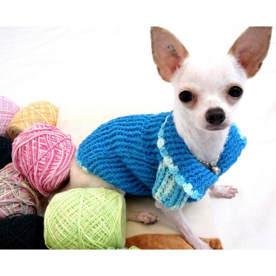 Items similar to designer dog clothes xxs knitwear - Dog clothes for chihuahuas ...