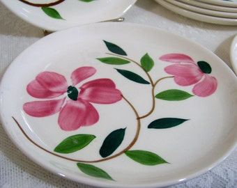 Vintage Floral Cake Plate Pottery Plate Hand Painted Set of 7