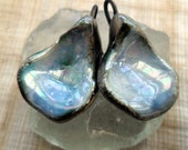 Blue and Mother of Pearl Lustre Shell Bellies