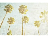 Vintage Palm Trees photo. SoCal. Beach. Vintage photography. retro home decor. california. green gold blue. california art