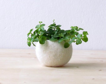 Felt succulent planter / Air plant holder / felted bowl / Mini flower vase / wedding gift / place holder / gift for her