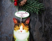 Personalized Pet Christmas Ornament Gift Animal Lover Cats Dogs Decor Funny Gag Present Holiday Decoration Fun Family Customized