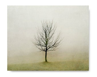 Landscape Photography, Minimalist Tree Photo, fog, foggy landscape, fine art photography, olive green, rustic home decor, living room decor