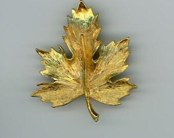 Golden Metal Maple Leaf Brooch