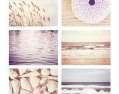 Beach Photo Set - Six Photographs 11x14, 8x10, 5x7 - ocean seashell cream pale purple lavender sea shells photography nautical wall print