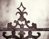 """Wrought Iron Photography - old gate architectural black and white neutral photo brown cream modern fine art print - 8x8 Photograph, """"Ornate"""""""