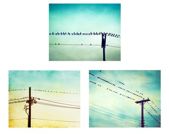 Bird on Wire Photo Set - Three Photographs, aqua blue teal turquoise mint 3 prints yellow photography flying fly sky art nursery wall art
