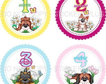 Baby Month Stickers Plus FREE Gift Girl Puppy Dog Flowers Butterfly Birds 1-12 Months Photo Prop Shower PRECUT Baby Age Stickers