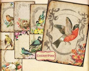 Digital collage sheet VINTAGE BIRD shabby chic printable ,8 designs, supplies for scrapbooking collage digital download