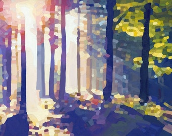 I Will Live To Enjoy the Light: landscape, sunlight, contemporary