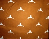 Cloth diaper and longhorn fabric