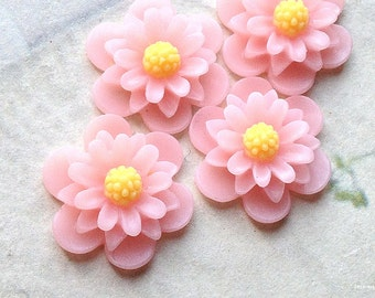19 mm Light Pink Colour Daisy Chrysanthemum Resin Flower Cabochons (.as)