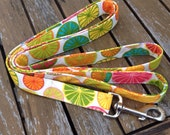 Dog leash citrus print