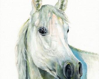 Original Oil HORSE Portrait Painting PONY Artwork from Artist SIGNED White Stallion