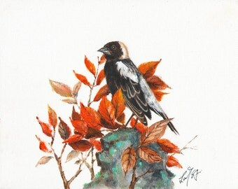 Original Oil BIRD Portrait Painting Art Artwork BOBOLINK Black Fall Leaves Artist Signed
