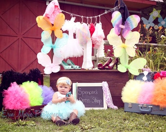 Butterly Fairy Children's Costume Wings