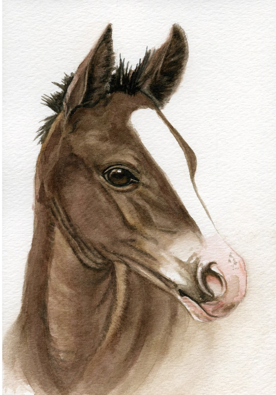 Arabian filly horse painting 5x8 original watercolor painting wall art earthspalette