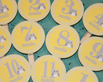 MOD OWL Theme 1st Birthday Photo Clips Banner Newborn - 12 months Chevron Yellow Gray - Party Packs Available