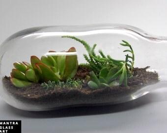 High Quality Terrarium, Recycled Glass Terrarium, Blown Glass Terrarium, Terrarium Art,  Succulent Garden Terrarium Part 23