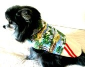 Cotton Dog Clothes for Toy Breed-Sizes, Made to Order Pet Clothes - Mock Aloha Shirt & Surfer Shorts Shih Tzu