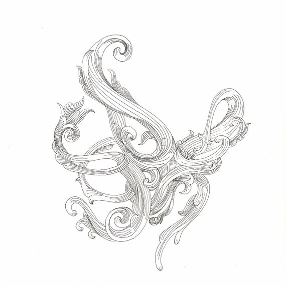 Free Octopus Drawings Octopus Drawing Scrollwork