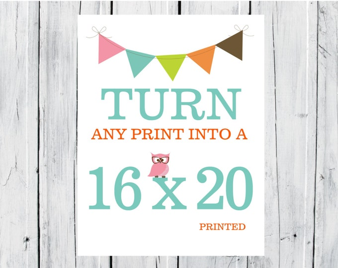 Turn any Print in my Shop into a 16x20
