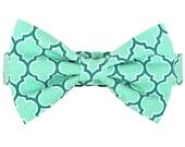 ON SALE Ready to SHIP- Aqua Turquoise Bow Tie Dog Collar, Dog Collar Bow Tie Set: Seagrove Lattice