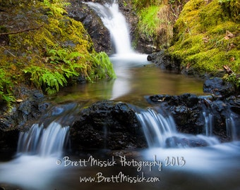 16x24 Forest Stream Fine Art Print Green Waterfalls Wall Decor Washington Oregon