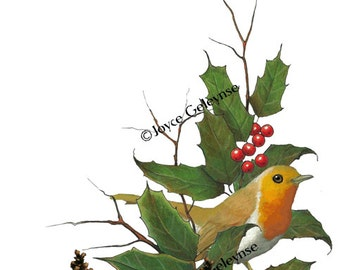 Clip Art: English Robin, Christmas Holly, Berries, Pine Cones, Freehand Art INSTANT DOWNLOAD