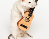 Musician mouse will play you a song - Taxidermy