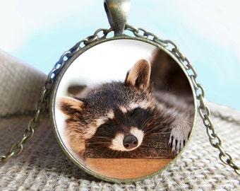 Raccoon Pendant/Necklace Jewelry, Raccoon Necklace Jewelry, Raccoon Photo Jewelry Glass Pendant Gift